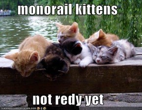 monorail kittens  not redy yet