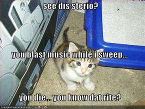 see dis sterio? you blast music while i sweep... you die... you know dat rite?