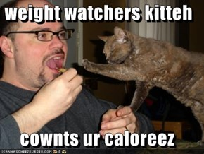 weight watchers kitteh  cownts ur caloreez