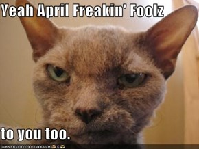 Yeah April Freakin' Foolz  to you too.