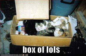 box of lols