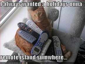I always wanted a holidays onna  remote island sumwhere...
