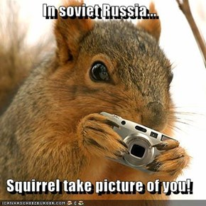 In soviet Russia...  Squirrel take picture of you!