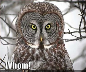_Whom!_