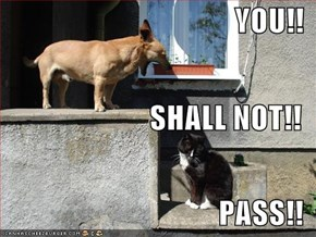 YOU!! SHALL NOT!! PASS!!