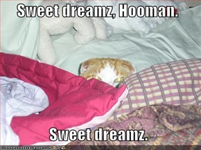 Sweet dreamz, Hooman.    Sweet dreamz.