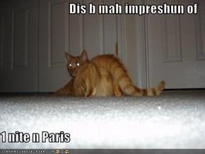 Dis b mah impreshun of  1 nite n Paris
