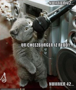 NUMMER 42... ...UR CHEEZBURGER IZ REDDY... NUMMER 42...