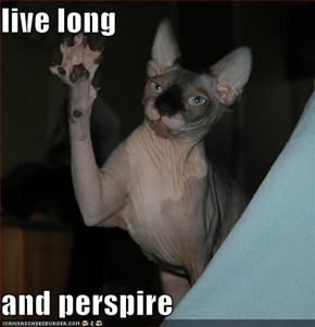 live long  and perspire