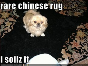 rare chinese rug  i soilz it