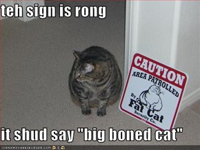 "teh sign is rong  it shud say ""big boned cat"""