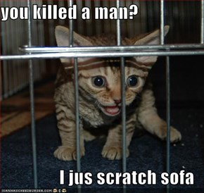 you killed a man?  I jus scratch sofa