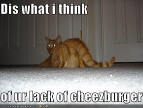 Dis what i think  of ur lack of cheezburger