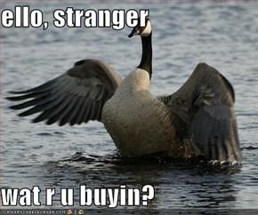 ello, stranger  wat r u buyin?