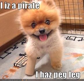 I iz a pirate  I haz peg leg