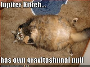 Jupiter Kitteh...  has own gravitashunal pull