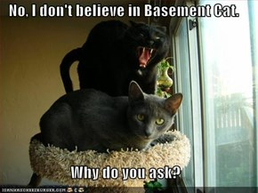 No, I don't believe in Basement Cat.  Why do you ask?