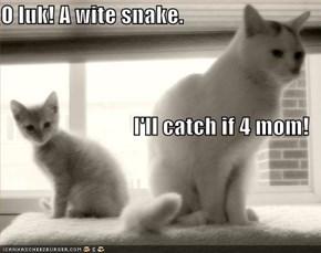 O luk! A wite snake. I'll catch if 4 mom!