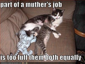 part of a muther's job  is too luff them both equally