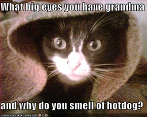 What big eyes you have grandma  and why do you smell of hotdog?