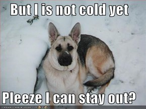 But I is not cold yet  Pleeze I can stay out?