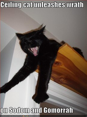 Ceiling cat unleashes wrath  on Sodom and Gomorrah