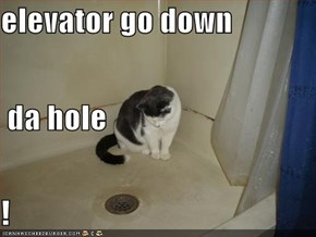 elevator go down  da hole !