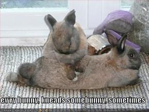 ev'ry bunny, kneads somebunny, sometimes