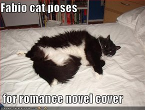 Fabio cat poses   for romance novel cover