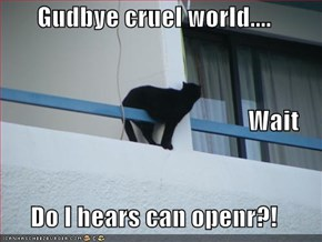 Gudbye cruel world....                                                  Wait Do I hears can openr?!