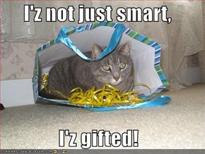 I'z not just smart,  I'z gifted!
