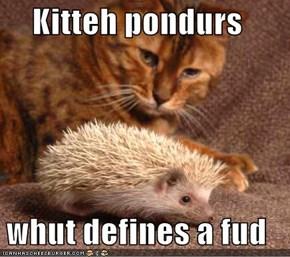 Kitteh pondurs  whut defines a fud