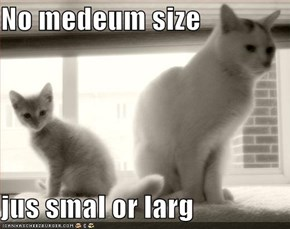 No medeum size  jus smal or larg