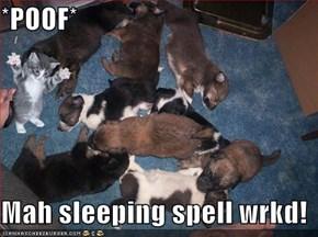*POOF*  Mah sleeping spell wrkd!