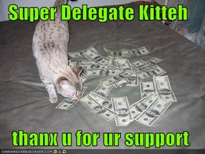 Super Delegate Kitteh     thanx u for ur support