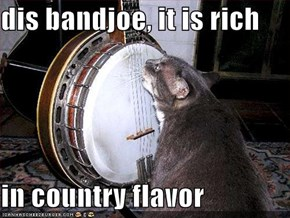 dis bandjoe, it is rich  in country flavor