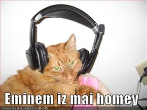 Eminem iz mai homey
