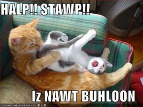 HALP!! STAWP!!  Iz NAWT BUHLOON