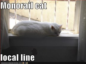 Monorail cat  local line