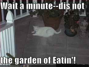 Wait a minute--dis not  the garden of Eatin'!