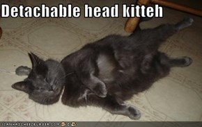 Detachable head kitteh