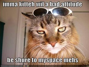 imma kitteh wif a bad attitude  be shure to myspace mehs