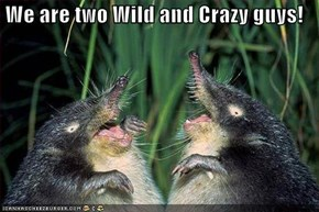 We are two Wild and Crazy guys!