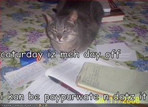caturday iz meh day off i kan be paypurwate n datz it