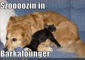 Szoooozin in   Barkalounger