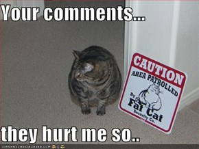 Your comments...  they hurt me so..