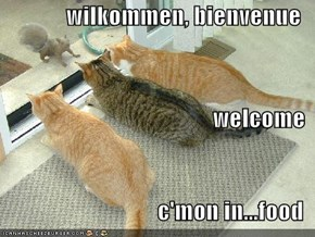 wilkommen, bienvenue welcome c'mon in...food