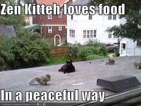Zen Kitteh loves food  In a peaceful way