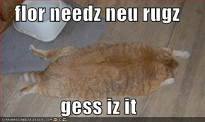 flor needz neu rugz  gess iz it