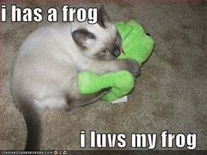 i has a frog  i luvs my frog